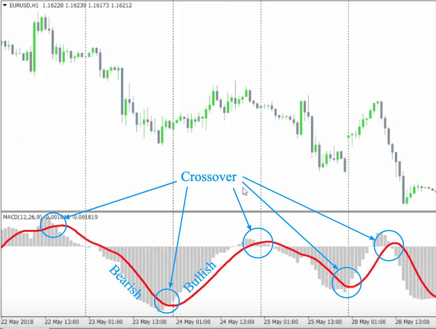 macd-crossover-forex